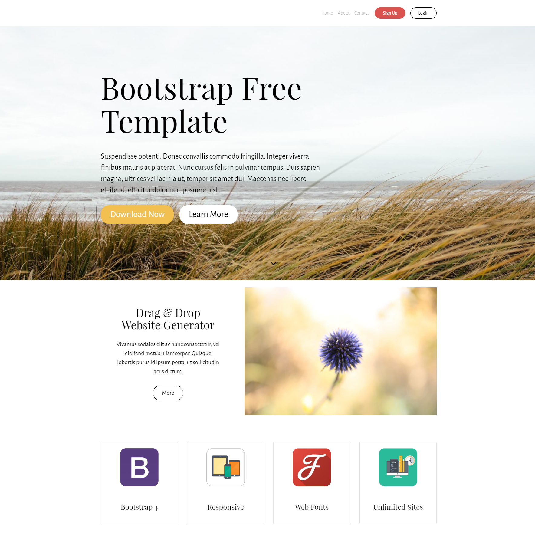 HTML5 Bootstrap Free Templates